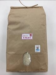 30年産 環境こだわり米「キヌヒカリ」白米10kg
