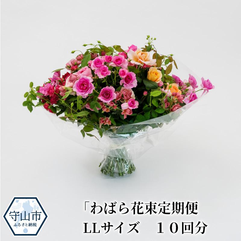 【ふるさと納税】わばら花束定期便 LLサイズ 10回分【滋賀県守山市】