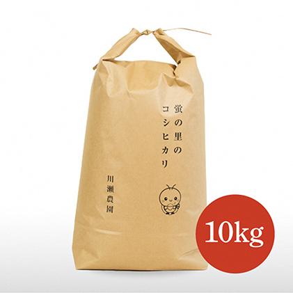 【ふるさと納税】蛍の里のコシヒカリ 10kg 【米・お米】