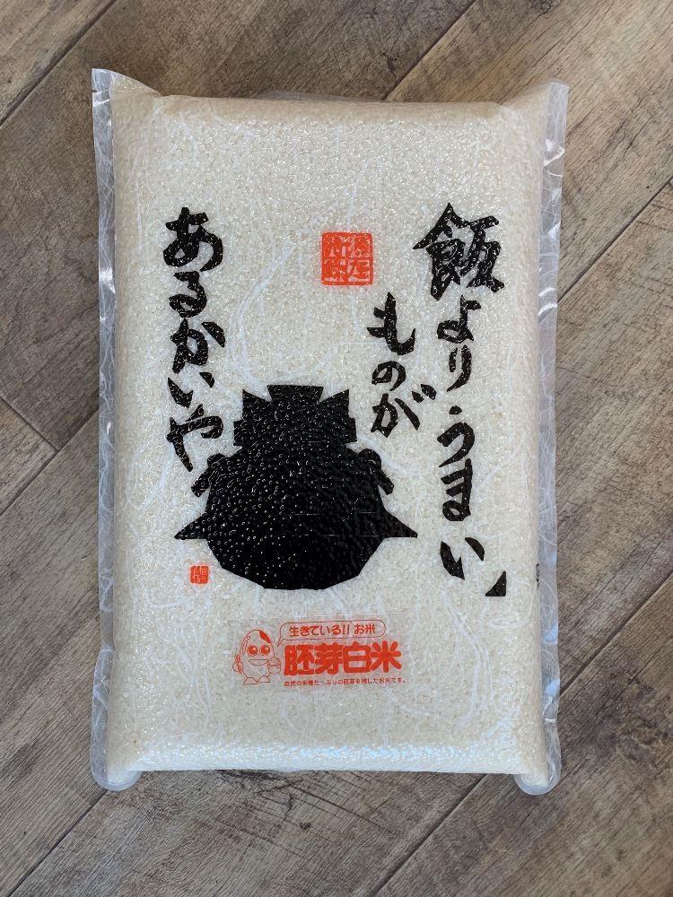 【ふるさと納税】30年産 米のきのしたの胚芽白米(コシヒカリ)~太陽・水・土~ 5kg