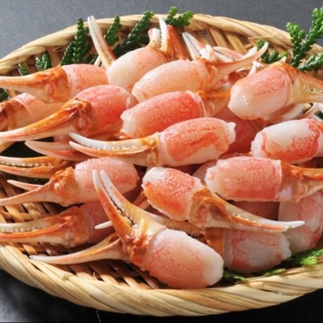 【ふるさと納税】【9】生ずわい蟹 カニ爪肉 約1.0kg(約500g×2)_NA02