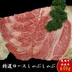 【ふるさと納税】京都肉(亀岡牛・丹波牛)特選ロースしゃぶしゃぶ約600g