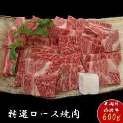 【ふるさと納税】京都肉(亀岡牛・丹波牛)特選ロース焼肉約600g
