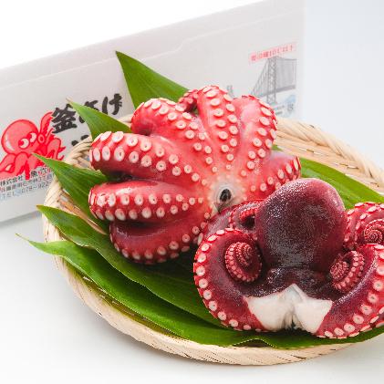 【ふるさと納税】釜あげ明石だこ 大 3尾 【魚貝類・タコ・加工食品】