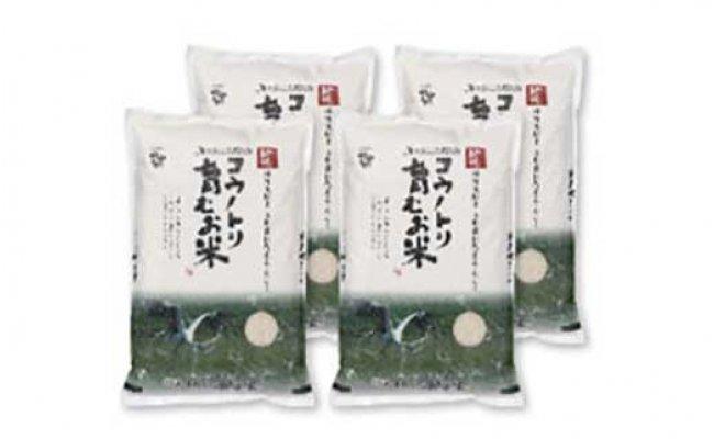 【ふるさと納税】コウノトリ育むお米減農薬(5kg×4袋)(94-004)
