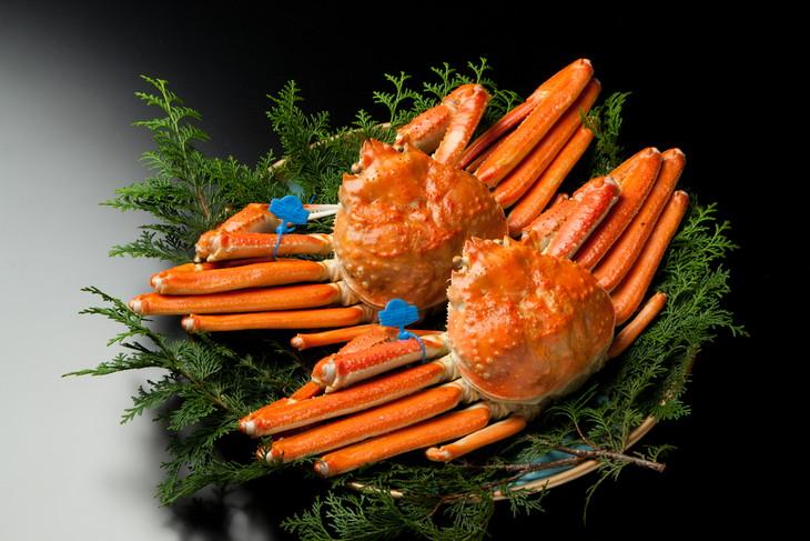 【ふるさと納税】【期間限定】茹で津居山かに(800g~1000g)×2匹 / カニ 蟹