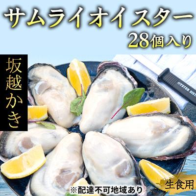 【ふるさと納税】坂越かき 殻付き27個(牡蠣ナイフ・軍手付き)サムライオイスター 【魚貝類・生牡蠣・かき・カキ・シーフード】 お届け:2020年1月~2020年4月末