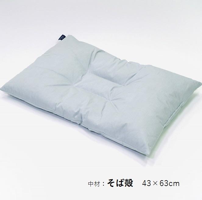 【ふるさと納税】アース製薬と共同開発!防ダニ枕【Dani Not】そばがら 43×63