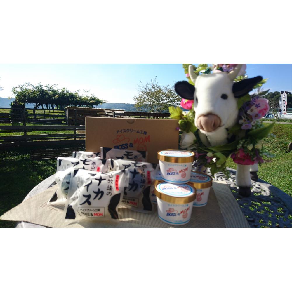 【ふるさと納税】牧場直営アイスクリーム工房のミルクたっぷりジェラート・もなかセット【アイスクリーム】