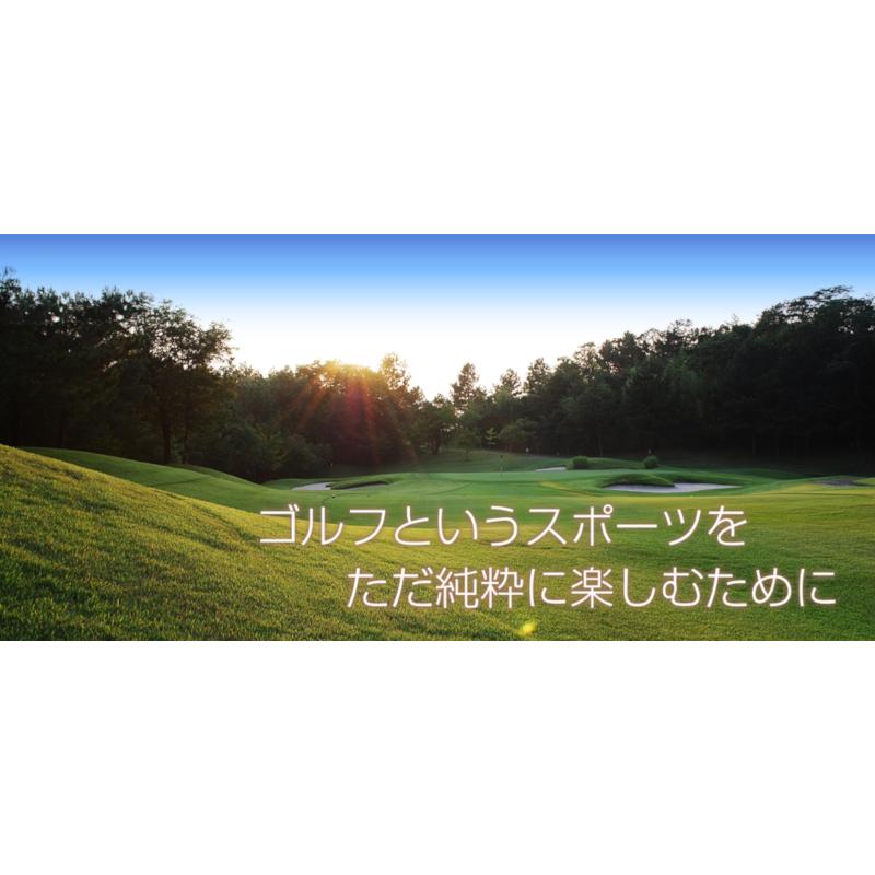 【ふるさと納税】【ゴルフ場】吉川インターゴルフ倶楽部 MECHAで使えるメッチャマネー