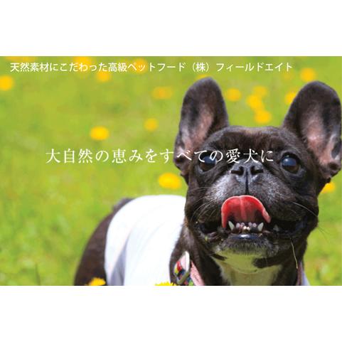 【ふるさと納税】犬のおやつ 大袋5点セット【ペットフード】