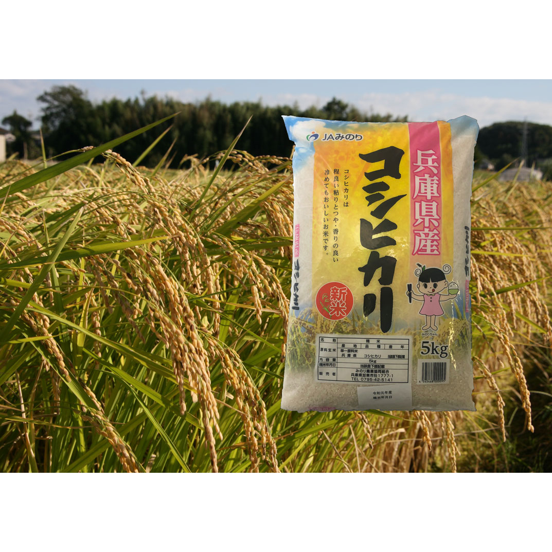 【ふるさと納税】コシヒカリ精米5kg