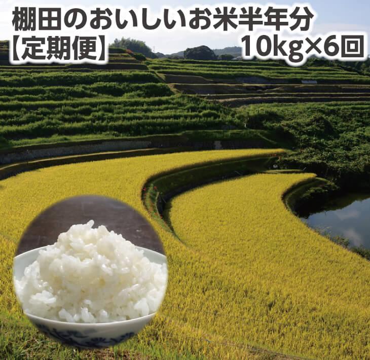 【ふるさと納税】【定期便】棚田のおいしいお米半年10kg×6回