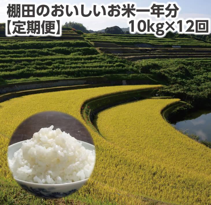 【ふるさと納税】【定期便】棚田のおいしいお米一年分10kg×12回