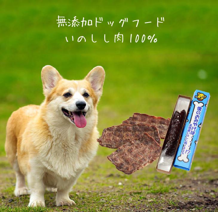 【ふるさと納税】無添加ドッグフードいのしし肉100% 僕のおみやげは・・・!?(犬用)