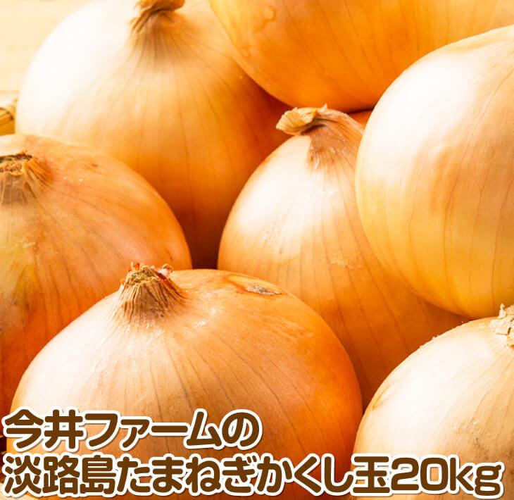 【ふるさと納税】今井ファームの淡路島たまねぎ「かくし玉」20kg