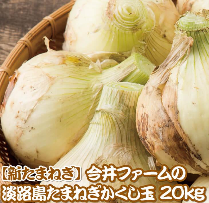 【ふるさと納税】【新たまねぎ】今井ファームの淡路島たまねぎ「かくし玉」20kg