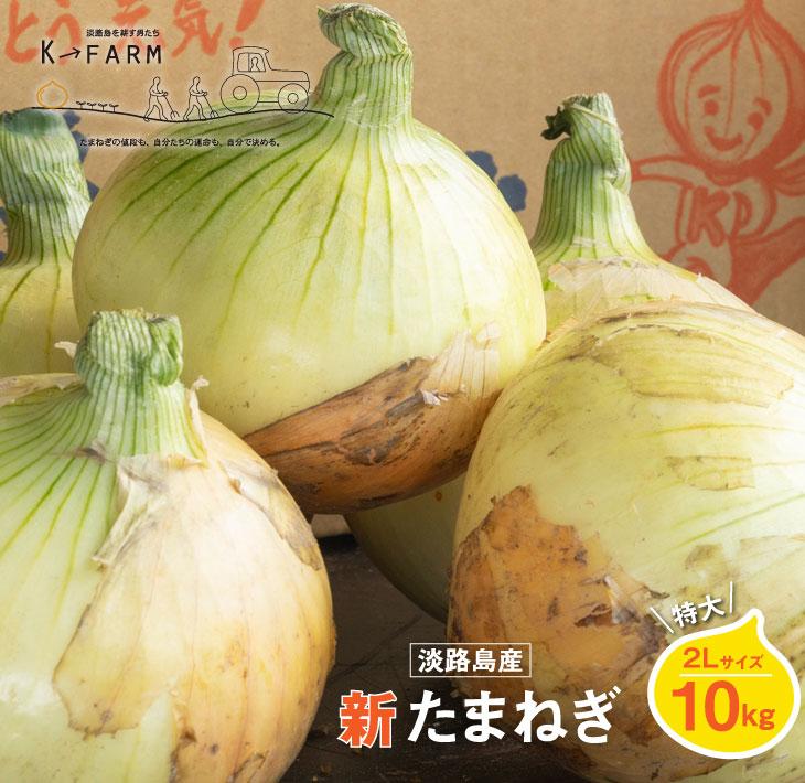 【ふるさと納税】【新たまねぎ】淡路島たまねぎ 特大2Lサイズ10kg