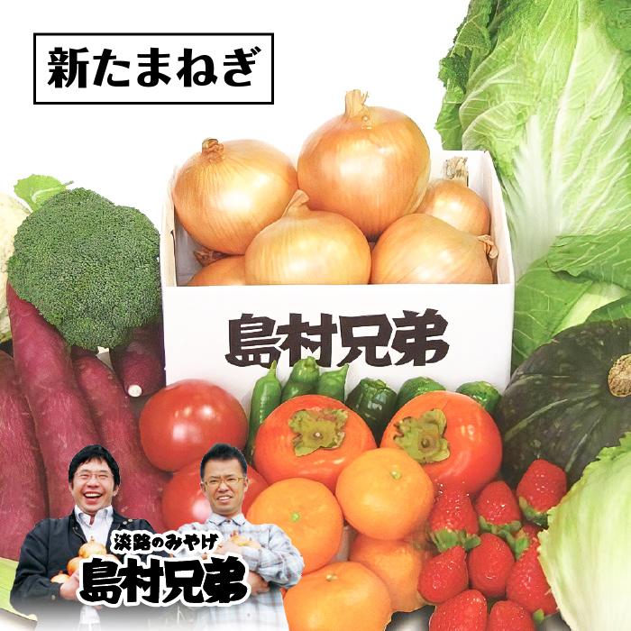 【ふるさと納税】【新たまねぎ】農家さんと選んだ畑の恵みセット