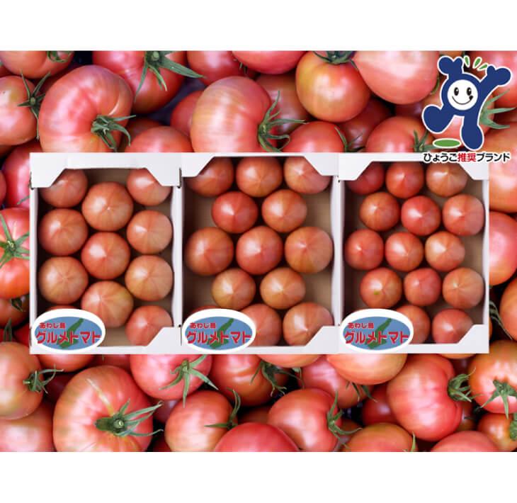 【ふるさと納税】三谷さんの淡路島グルメトマト3kg