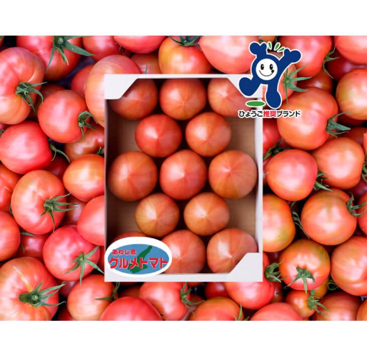 【ふるさと納税】三谷さんの淡路島グルメトマト1kg