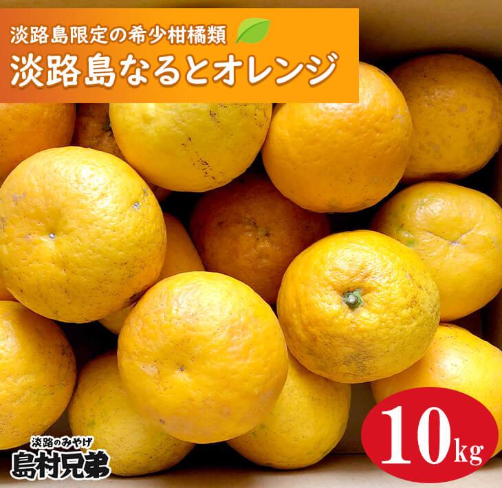 【ふるさと納税】淡路島産 淡路島なるとオレンジ 10kg