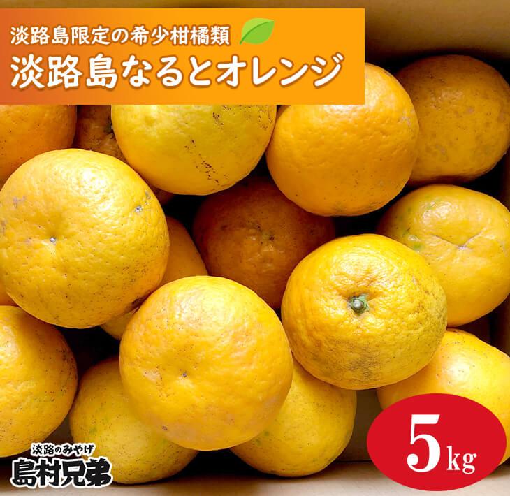 【ふるさと納税】淡路島産 淡路島なるとオレンジ 5kg