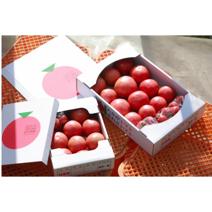【ふるさと納税】AP4 田中農園自慢のトマト4kgと凝縮トマトピューレ&炊きこみご飯の素