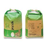 【ふるさと納税】256 あぐりたかのあったか米 コシヒカリ20kg