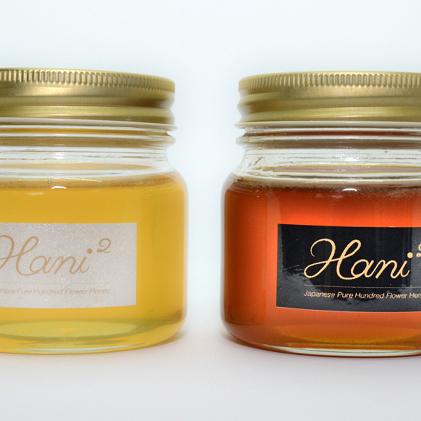 【ふるさと納税】Hani2の蜂蜜2本入り 【加工品・はちみつ・ハチミツ】