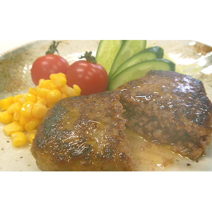 【ふるさと納税】志方牛ジューシーハンバーグ(デミグラスソース) 【肉・牛肉・加工品】