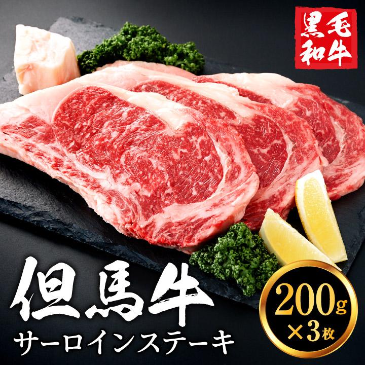 【ふるさと納税】020AA02N.いちかわ精肉店「サーロインステーキ」200g×3