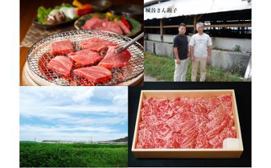 【ふるさと納税】KBS-02 城谷牧場の神戸ビーフ(神戸牛)焼肉用400g
