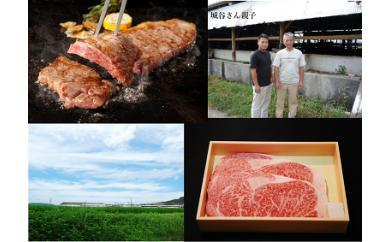 【ふるさと納税】KBS-03 城谷牧場の神戸ビーフ(神戸牛)ステーキ用360g