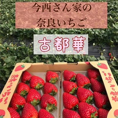【奈良県大和郡山市】 【ふるさと納税】今西さん家の奈良いちご古都華 300g×4パック 【果物類・いちご・苺・イチゴ・フルーツ・4パック】 お届け:2021年12月20日~2022年4月上旬