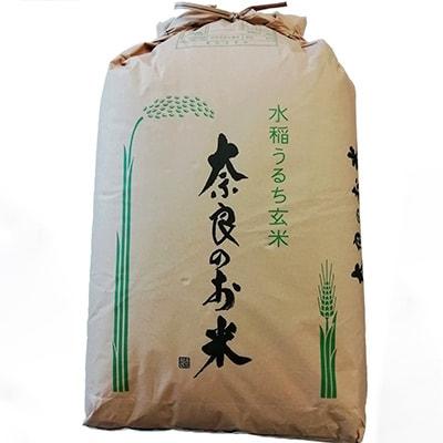 【ふるさと納税】ひのひかり(奈良県天理産) 玄米30kg【令和2年産】(一等米)【1085320】
