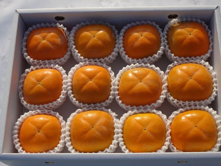たねなし柿 7.5kg箱(24~26個入)