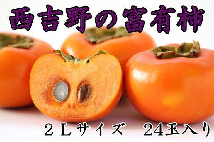【ふるさと納税】[本場の柿]奈良・西吉野の富有柿24玉入り(2Lサイズ)※11月初旬~11月下旬発送予定