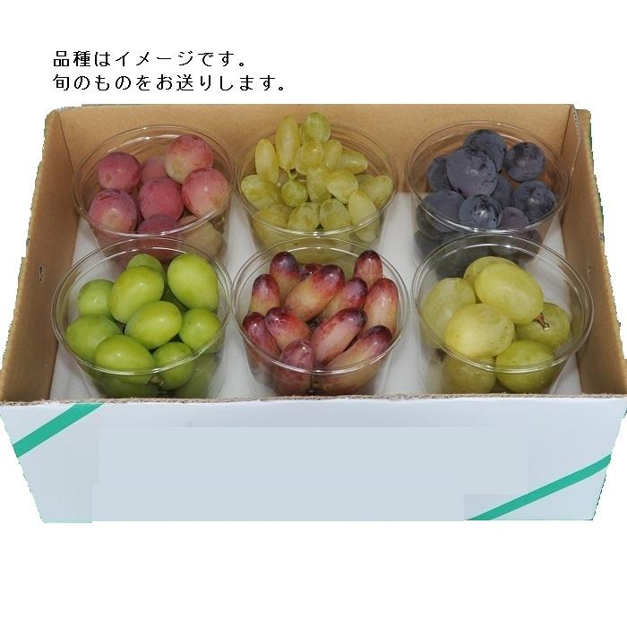 【ふるさと納税】カットブドウ6種詰合せ