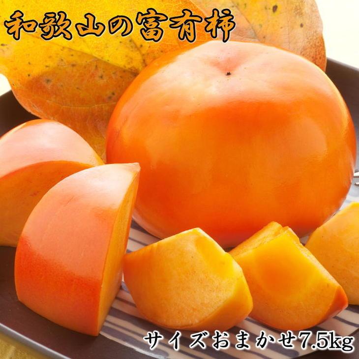 【ふるさと納税】[甘柿の王様]和歌山産富有柿約7.5kgサイズおまかせ