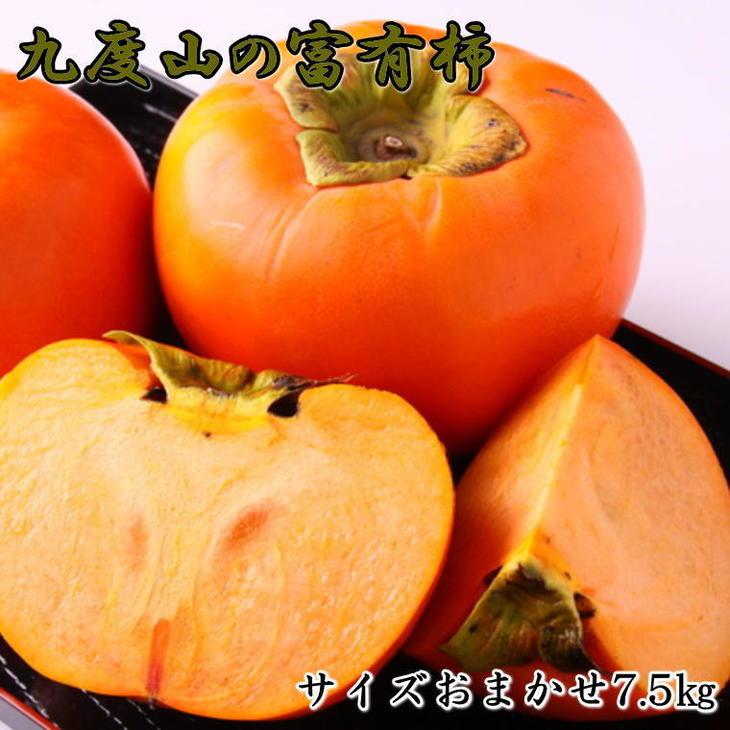 【ふるさと納税】[柿の名産地]九度山の富有柿約7.5kgサイズおまかせ【2021年秋発送】