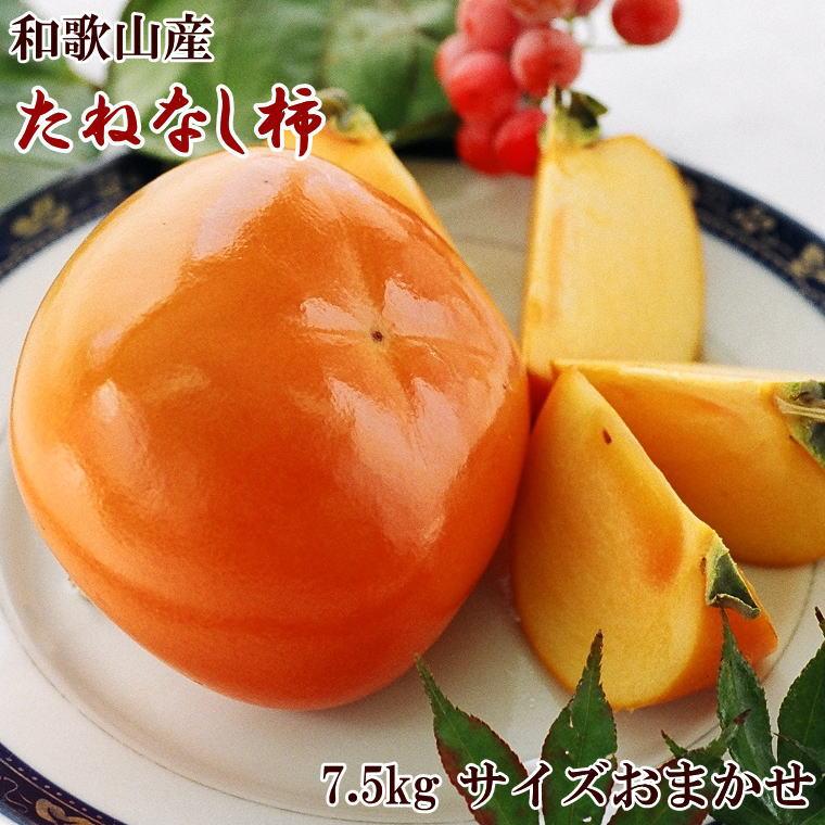 【ふるさと納税】【秋の味覚】和歌山産たねなし柿(M~2Lサイズおまかせ)約7.5kg【2021年秋発送】