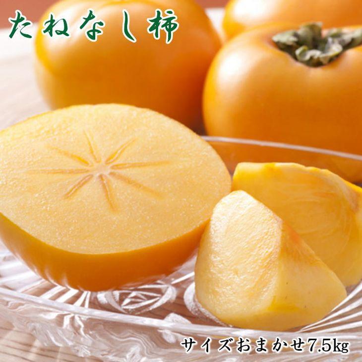 【ふるさと納税】【秋の味覚】和歌山産たねなし柿(M~2Lサイズおまかせ)約7.5kg ※2021年9月中旬頃~11月上旬頃順次発送予定