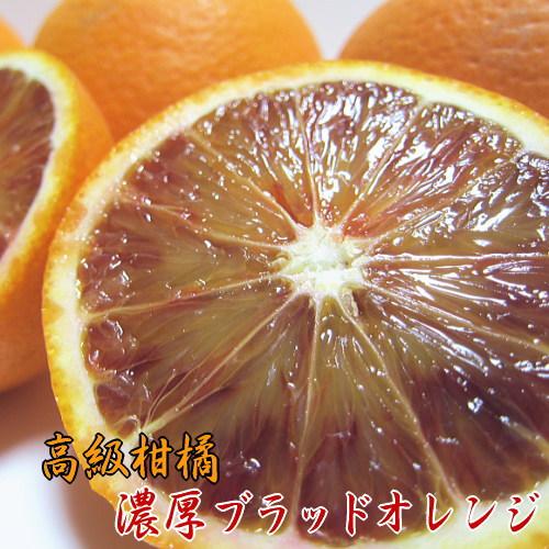 【ふるさと納税】【高級柑橘】和歌山県産 濃厚ブラッドオレンジ