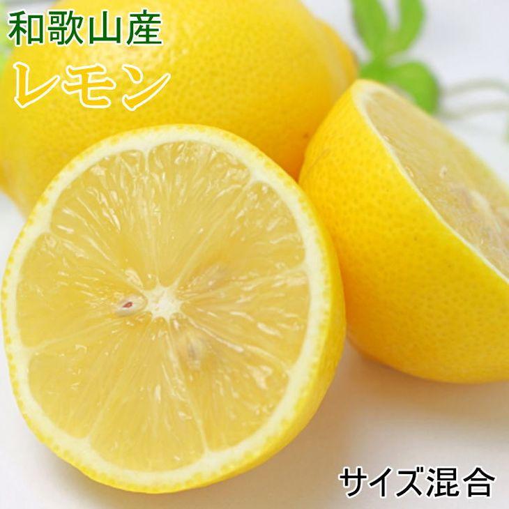 太陽いっぱいに浴びた果汁たっぷりのレモン 【ふるさと納税】【産直】和歌山産レモン約5kg(サイズ混合) ※離島・沖縄への発送は不可となります。※2022年3月下旬~4月下旬頃発送予定