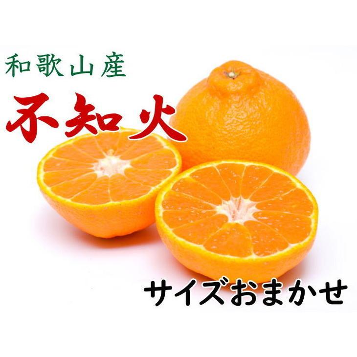 【ふるさと納税】【厳選】和歌山産不知火(デコ)(20玉~28玉おまかせ)