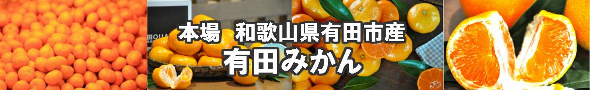 和歌山県有田市:【ふるさと納税】和歌山県有田市