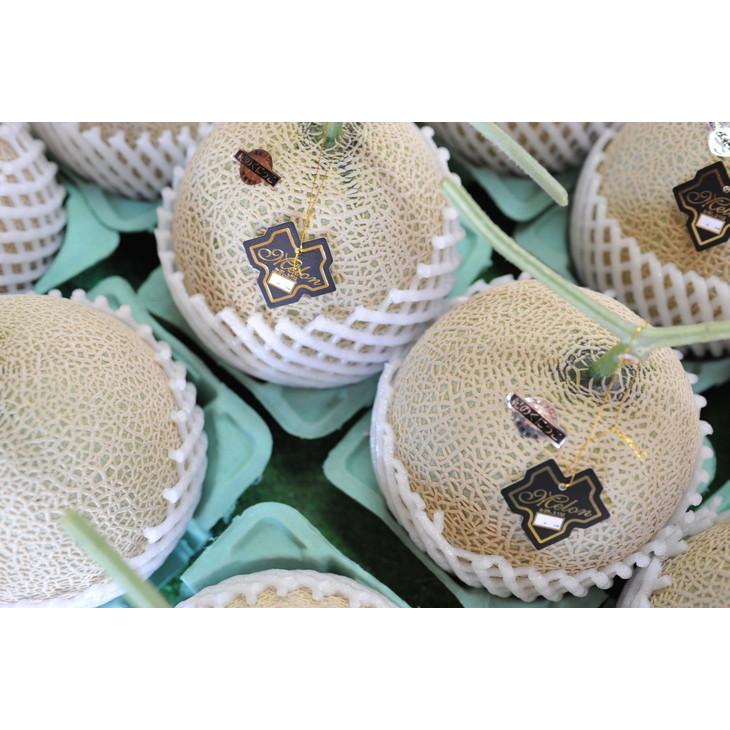【ふるさと納税】農園自慢の『マスクメロン』(アールスメロン)大玉×2玉入り