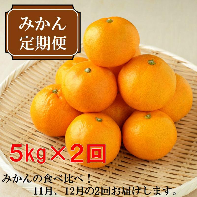 【ふるさと納税】厳選みかん定期便5kg 2回(11月、12月)