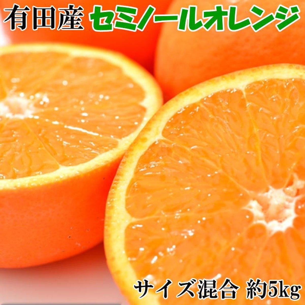 【ふるさと納税】和歌山有田産セミノールオレンジ約5kg(サイズ混合) ※2021年4月下旬~5月中旬頃に順次発送予定